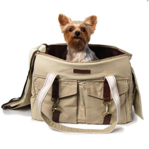 designer dog carrier